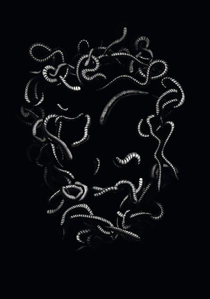 Worms Art | Art Design & Inspiration Gallery