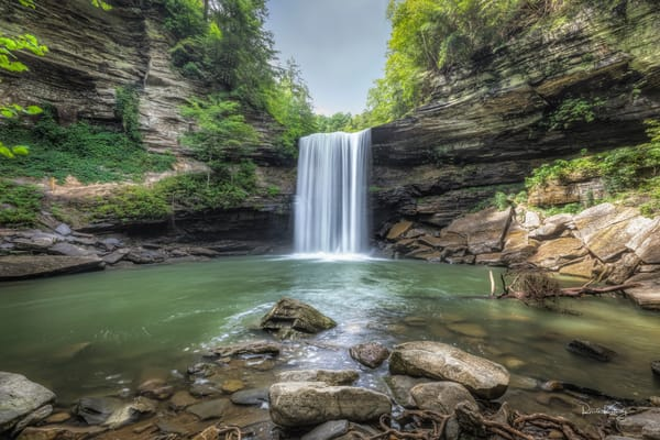 Foster Falls Tennessee
