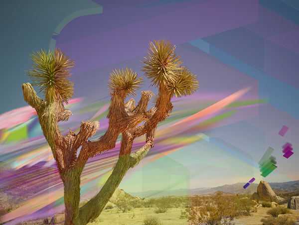 Joshua Tree, Northern Lights, Rainbow