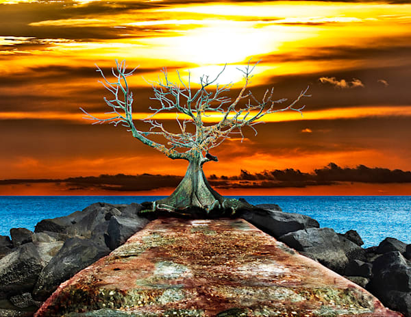 The Old Kapok Tree - Conceptual Art Print by Christopher Gatelock