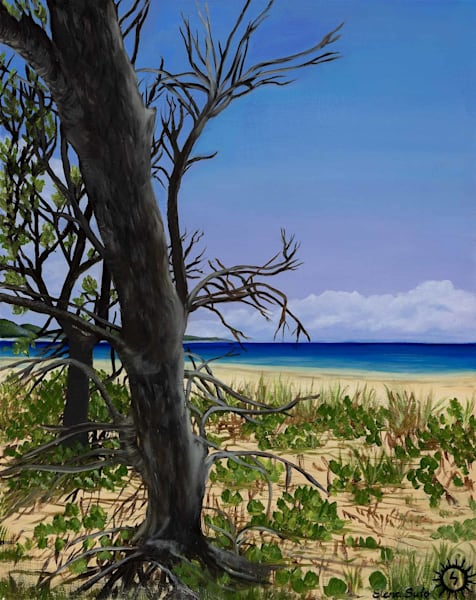 Trees on the Beach