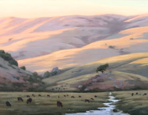 Chileno Valley Creek and Cattle