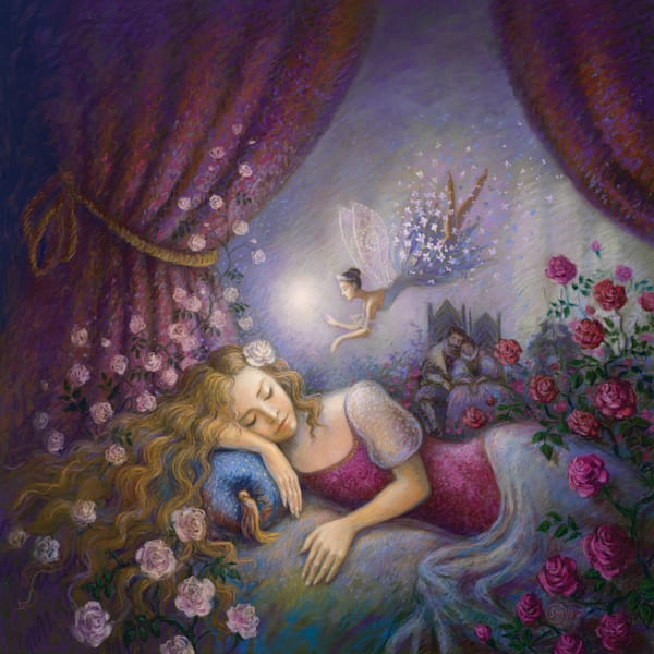 pastel, print, sleeping, beauty, ballet