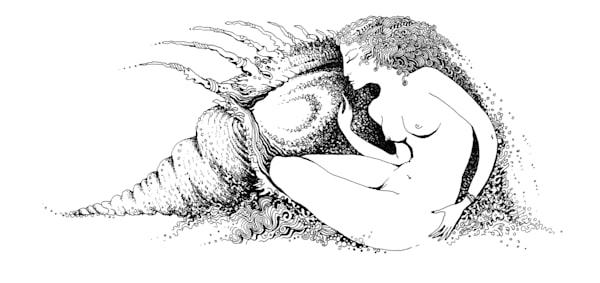 Birth Of Venus Art   lyubabogan