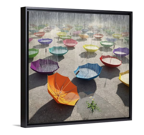 Cynthia Decker | Downpour Gallery Style Canvas