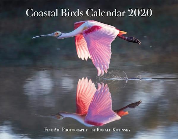 Coastal Birds Calendar 2020