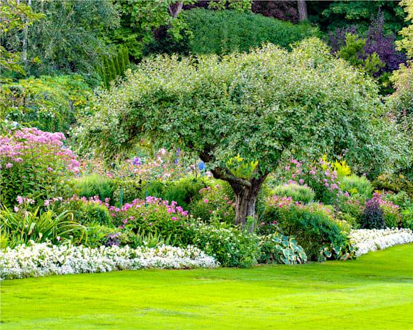 Butchart, Gardens ,Photograph, Home-Decor,