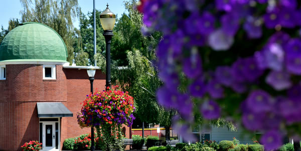 Flower Baskets On Linfield Campus