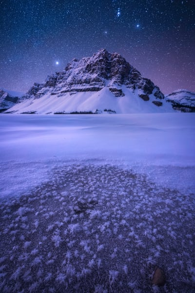'Snowflakes & Twilight' Photograph by Jess Santos for sale as Fine Art