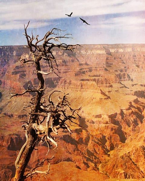 Above The Grand Canyon