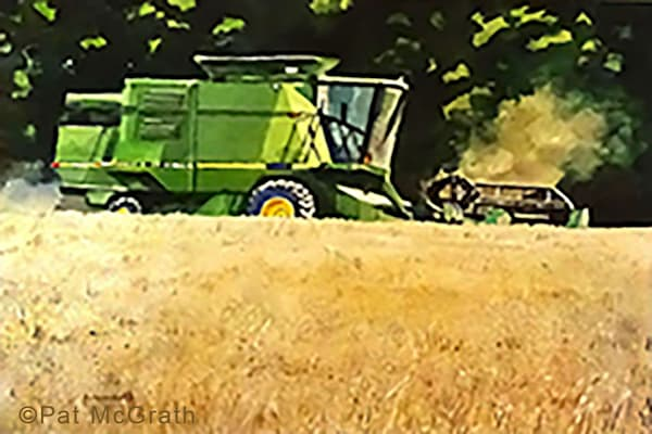 Harvesting Barley #2 Art | East End Arts
