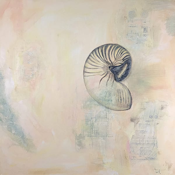Shell Abstract 2' Original Mixed Media Shell Painting on canvas