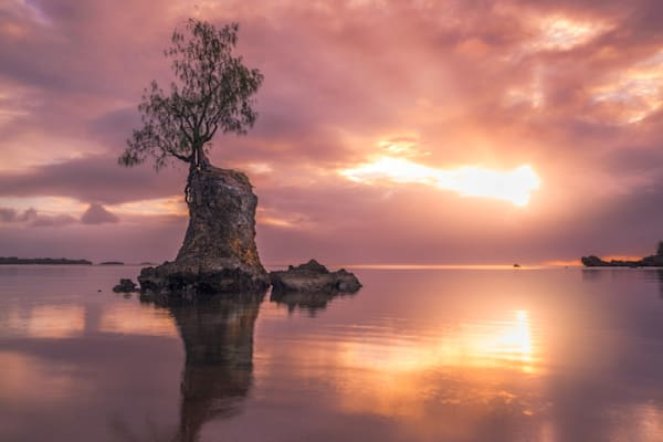 'Rock Forests & Sun Rays' Photograph by Jess Santos for sale as Fine Art
