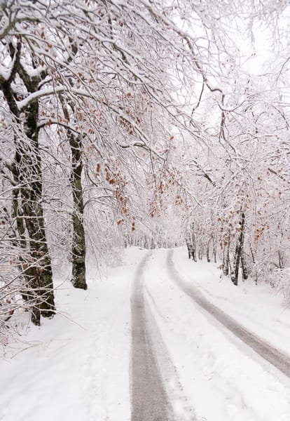 Snowy Path Art | Drew Campbell Photography
