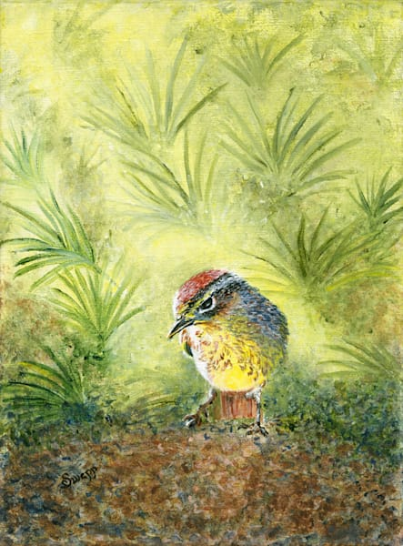 Susan Swapp - Palm Warbler Under Palms