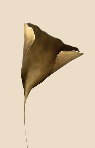 Gingko Art | karlherber