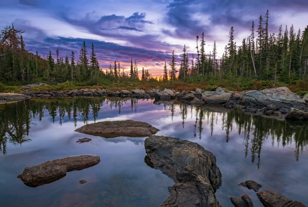 Purple-Pink Sunrise Photo of Marigold Pond Rocky Mountain National Park Colorado