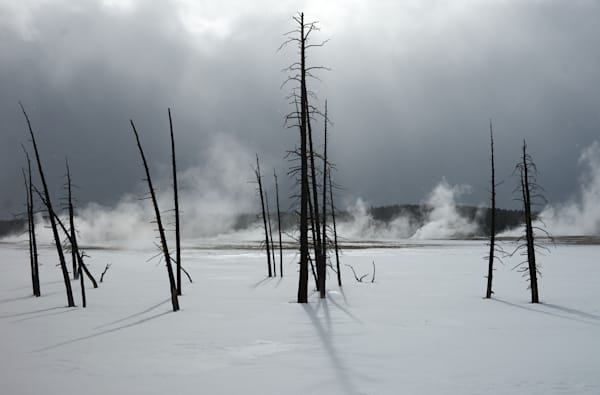 Stark Landscape In Yellowstone National Park Art | Drew Campbell Photography