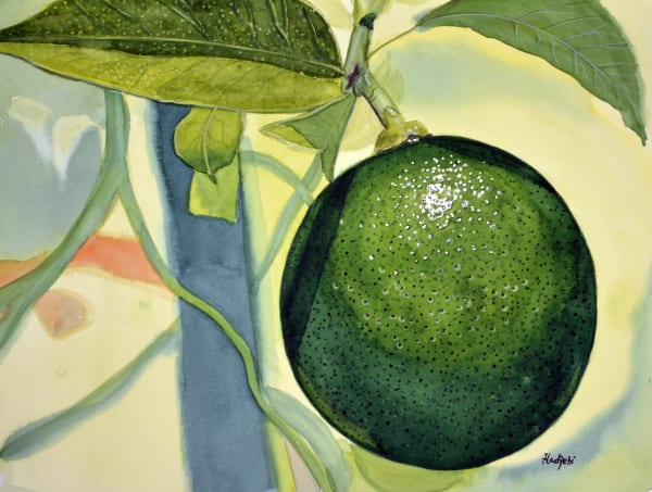 A painting of a single lime by artist Shah Hadjebi