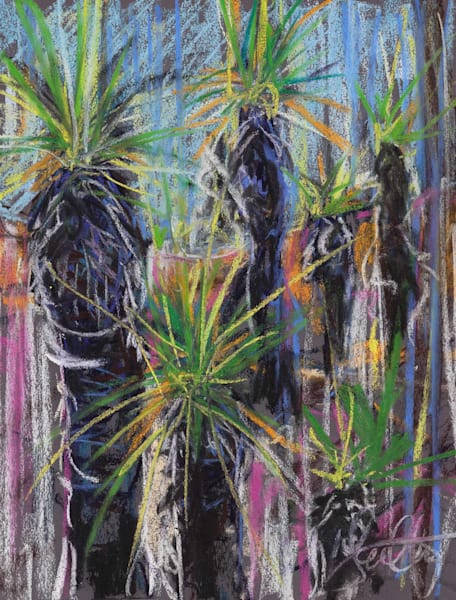 Toohey Forest Figures 4