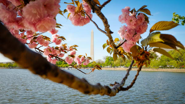 Monument in Spring print | Richard Crable Fine Art Photography
