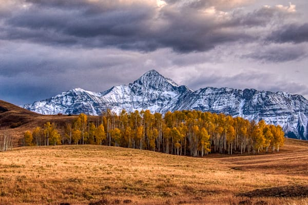 Wilson Peak With Fall Aspens Photography Art | Peter Batty Photography