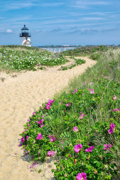 Path to Brant Lighthouse