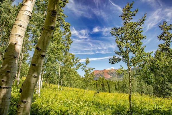 Aspen and Colorado Mountains Photo 6814   Colorado Photography   Koral Martin Fine Art Photography