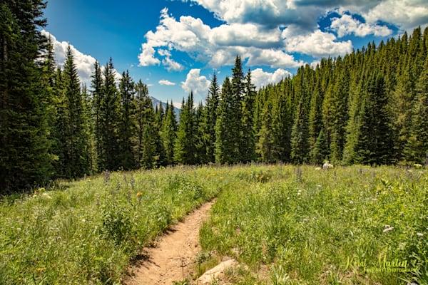 Snodgrass Trail Mountain View Photograph 7020| Colorado Photography | Koral Martin Fine Art Photography