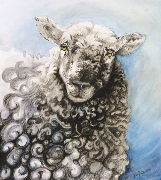 Sheep Curls Art by Kelsey Showalter Studio