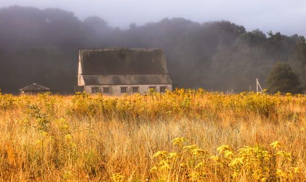West Tisbury Foggy Fields Of Gold Art | Michael Blanchard Inspirational Photography - Crossroads Gallery