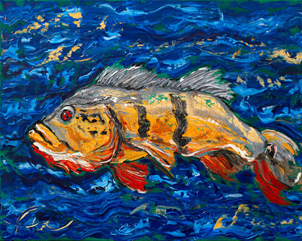 Tucunaré Fish Painting | Fer Caggiano Art