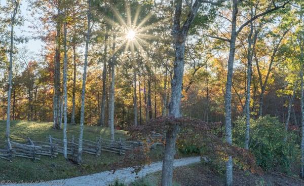 Autumn Scene Art | Drew Campbell Photography