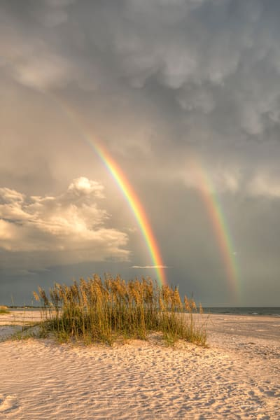 The Rainbow and the Sea Oats