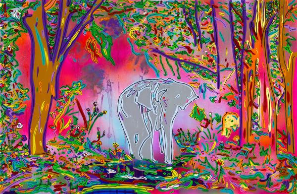 Wisdom | Animal Art | JD Shultz Art