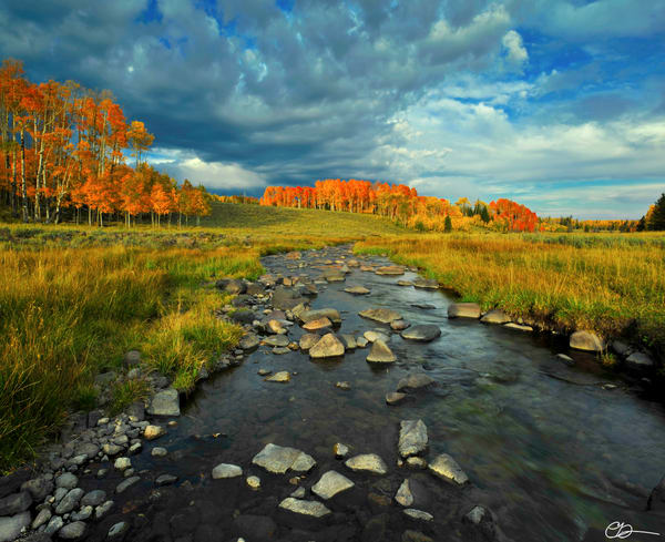 Upper Mammoth Creek Autumn Photography Art | Craig Primas Photography