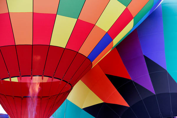 Great Forest Park Balloon Race Art | Moore Design Group