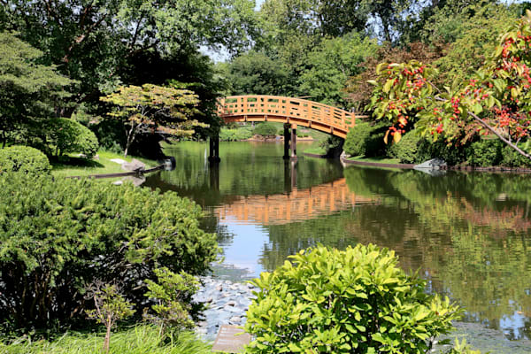 Drum Bridge At Japanese Garden, Missouri Botanical Garden Art | Moore Design Group