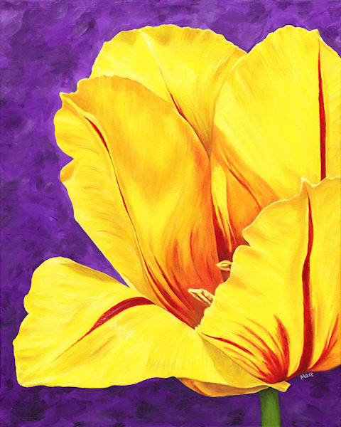 "Original floral acrylic painting by Mary Anne Hjelmfelt. This yellow tulip is on a 16"" x 20"" canvas with a background of deep purple."