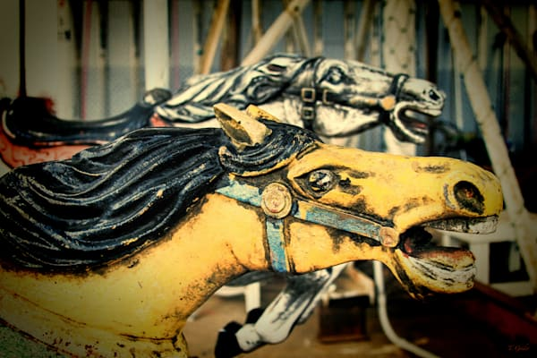Yellow And White Carousel Horses Duo Photography Art | TONYGRIDERIMAGES.COM