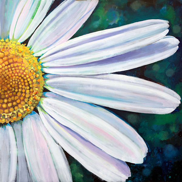 Daisy Flower Original Art