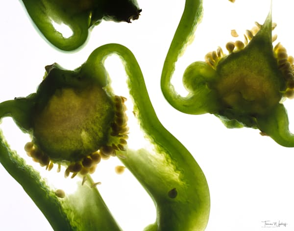 Peppers Sig Photography Art | Thomas Wyckoff Photography
