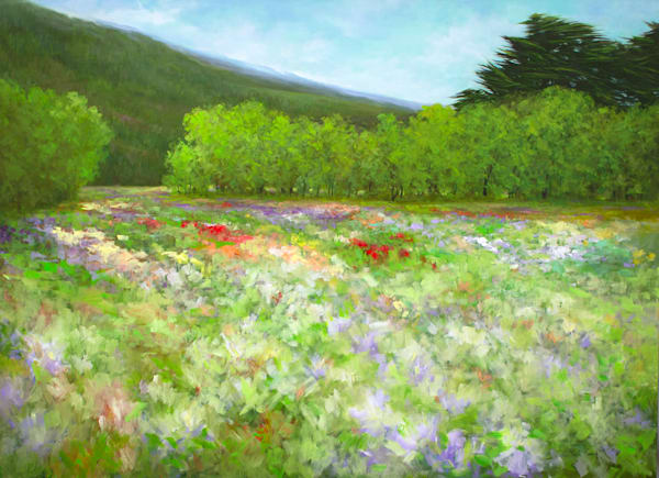 "FLOWERS OF HALF MOON BAY - LOOKING SOUTH - 42 x 58"""