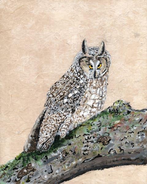 Robyn Kruse - Long Earred Owl