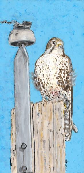 Robyn Kruse - Prairie Falcon