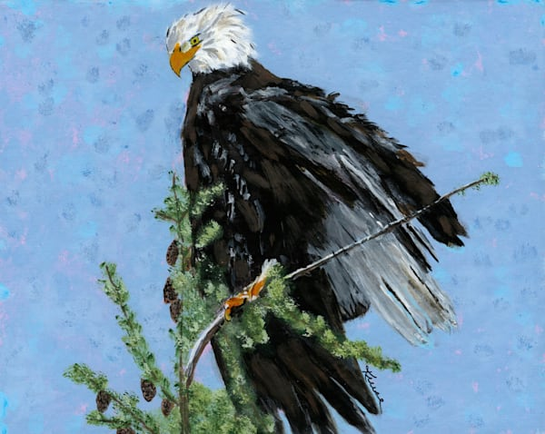 Robyn Kruse - Wind Blown Eagle