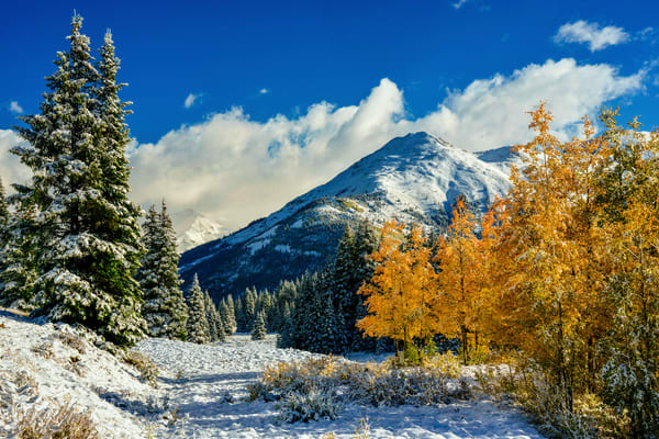 Yellow, White And Blue Photography Art | Craig Primas Photography