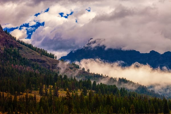 Yellowstone Ground Fog Photography Art | Craig Primas Photography