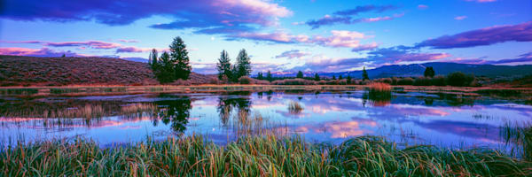Grand Teton Meadow Pond Photography Art | Craig Primas Photography