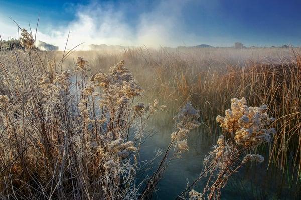 Fish Stream Steam Photography Art   Craig Primas Photography